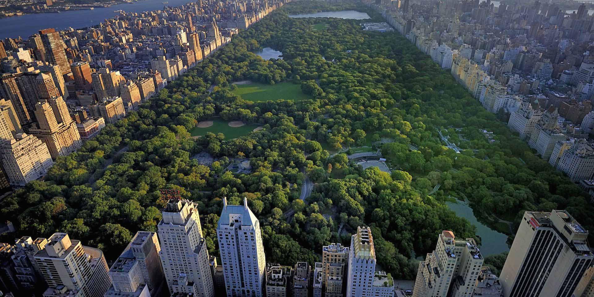 central-park-pov.jpg
